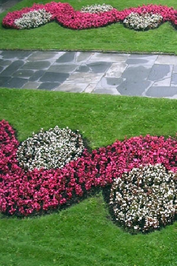Foto manutenzione giardini di floricoltura moretti for Manutenzione giardini