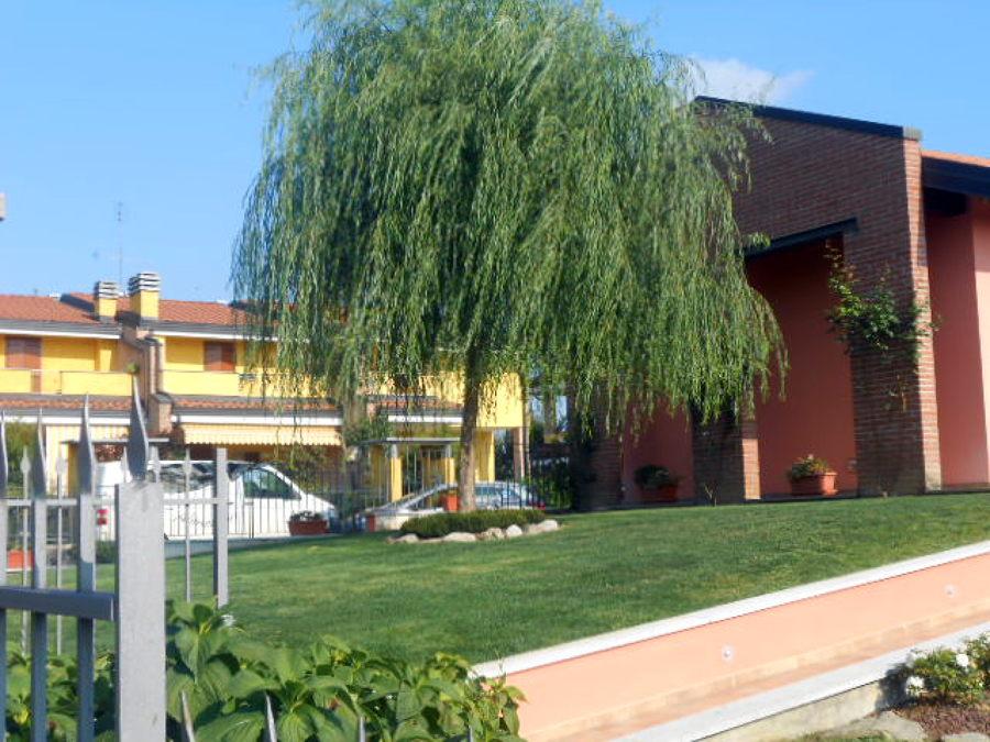 Foto prato a zolle di lp giardini di poletti lorenzo for Prato zolle