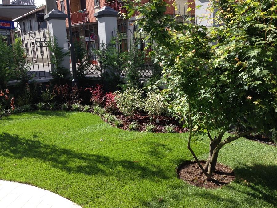 Foto progettazione e realizzazione giardini e terrazzi de for Progettazione giardini lucca