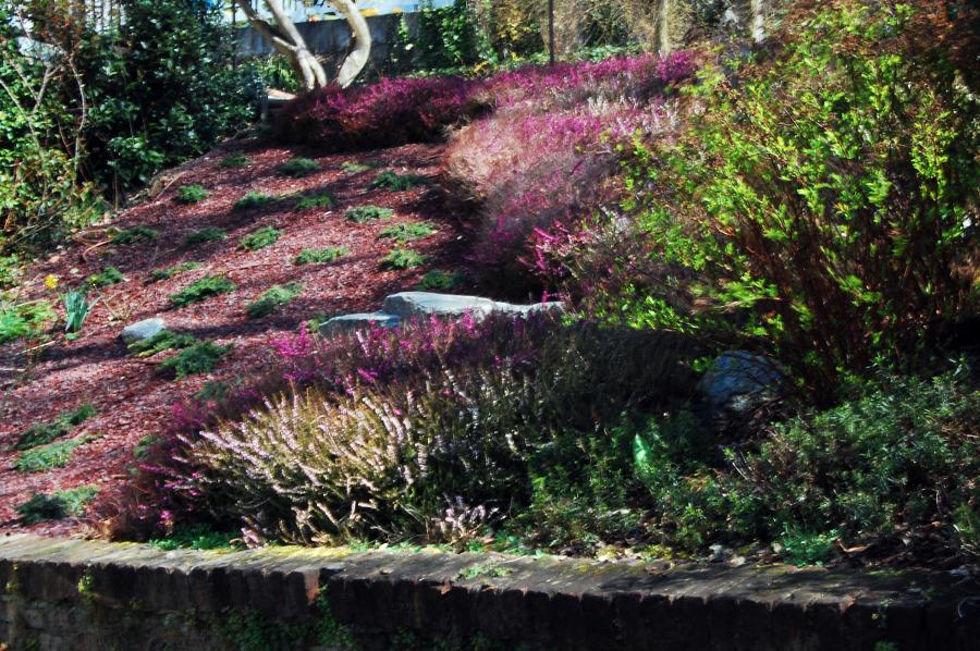 Foto: Roccioso 2 De Giardini Di Pan #56035 - Habitissimo
