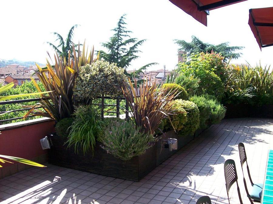Foto terrazzo fiorito 2 di societa 39 agricola aldrovandi for Idee per giardino in terrazza