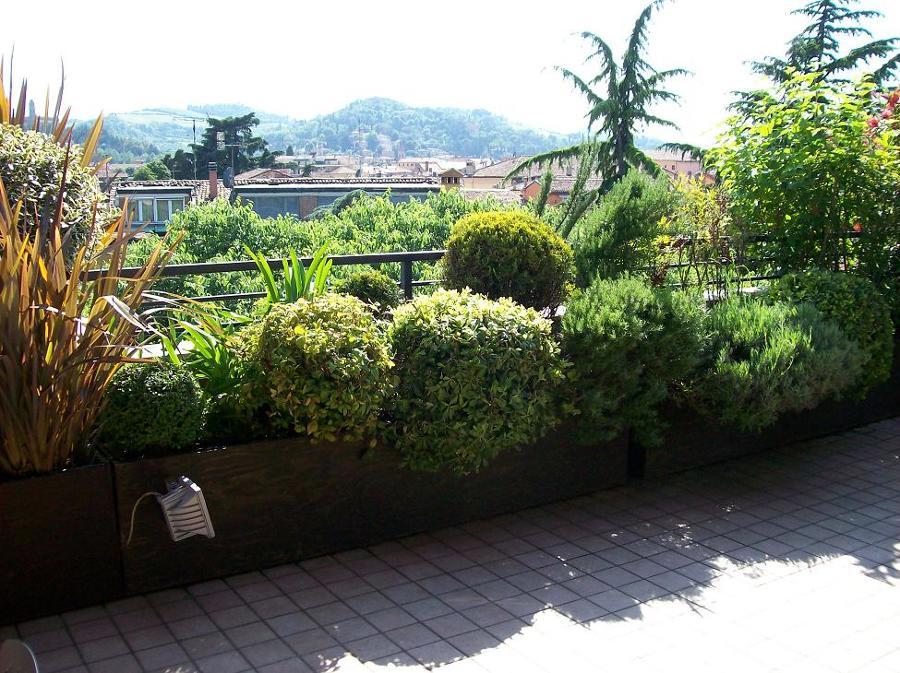 Foto terrazzo fiorito di societa 39 agricola aldrovandi for Idee per terrazzi fioriti