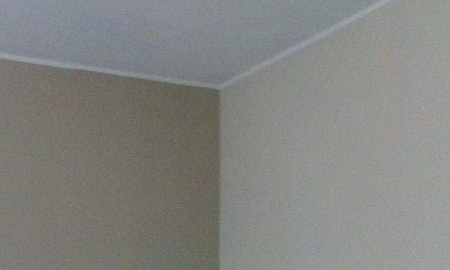 Foto tortora chiaro medio di kromatika colore - Camera da letto tortora ...