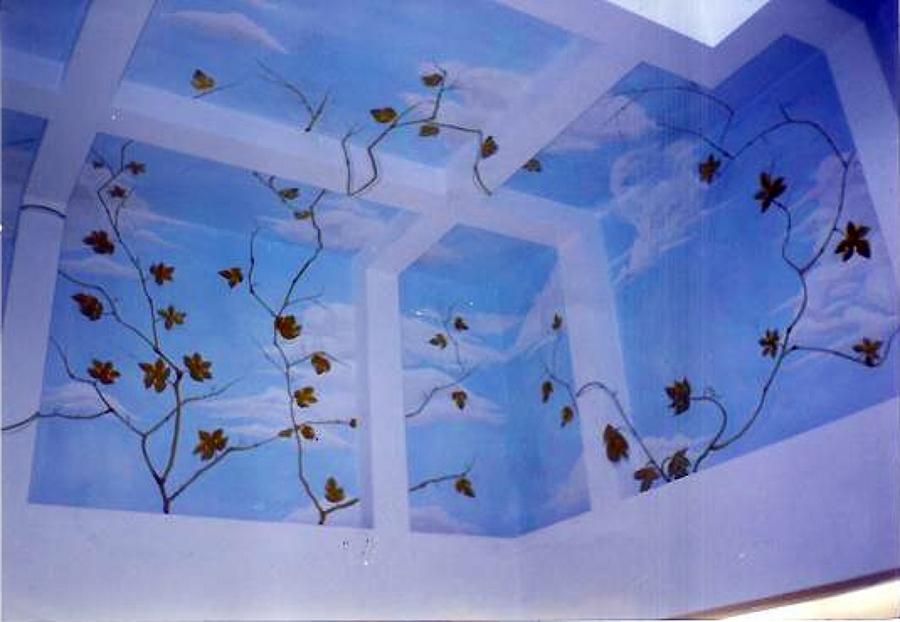Foto: Trompe L'oeil: Cielo con Tralci e Foglie (realizzato Dalla De.co di Davide Lorrai) di (de ...