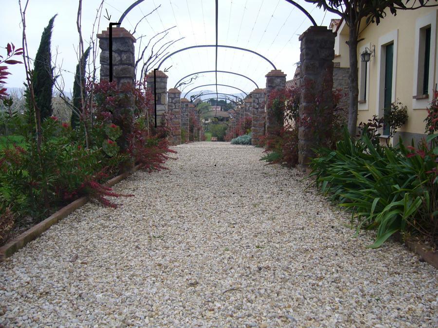 Foto viale in ghiaia di areeinverde 46322 habitissimo - Viali da giardino ...