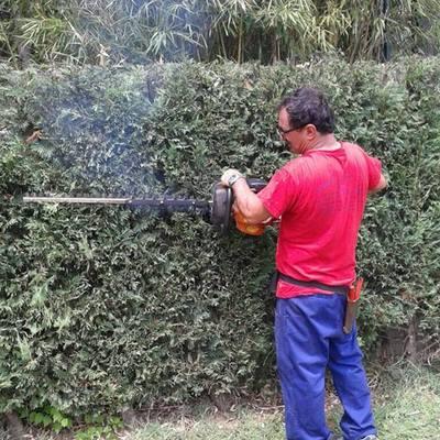 Giardinaggio-siepe