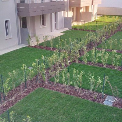 Realizzazione verde condominiale