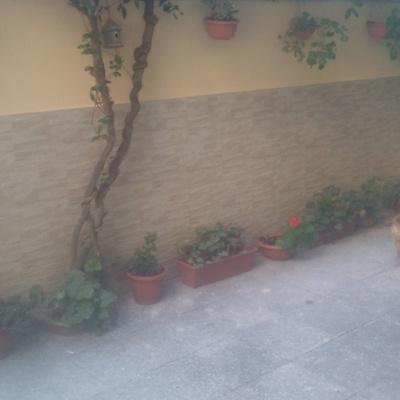 rivestimento muro esterno