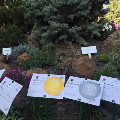 Medaglia d'oro e medaglia d'argento Euroflora 2018