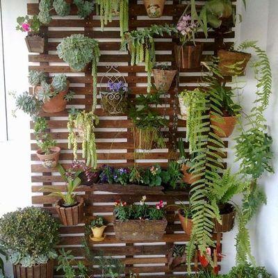 Tramezzo di terrazzo con vasi colorati