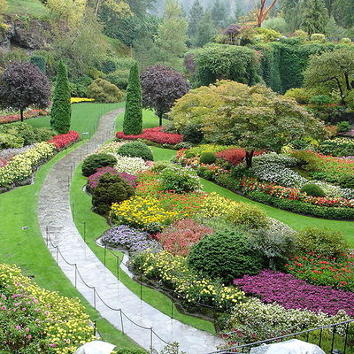 Tipologia di giardino mediterraneo