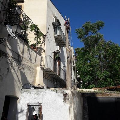 Abbattimento albero nel centro storico a Palermo_Dopo