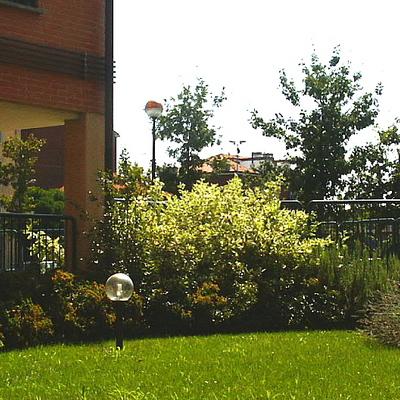 giardini condominiali bellissimi