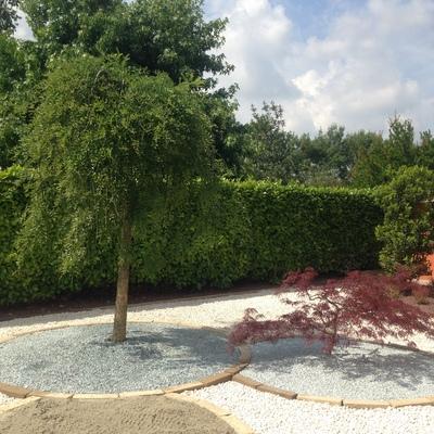 giardino minimale