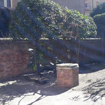 Foto Giardino in Centro Storico a Ferrara