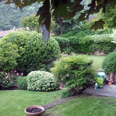 Manutenzione giardino stagionale