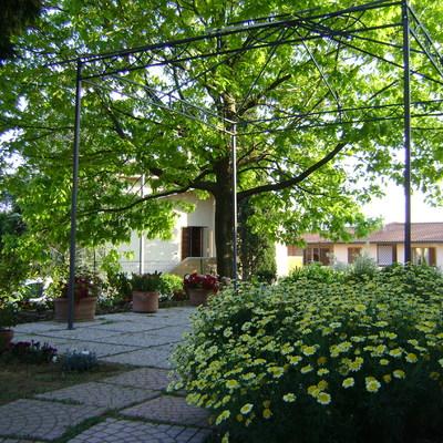 Progettazione di giardino