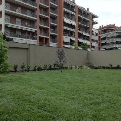 Creazione giardino condominiale