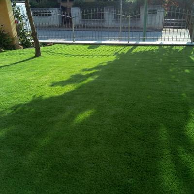 lavoro in erba sintetica