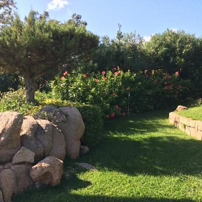 manutenzione giardino privato