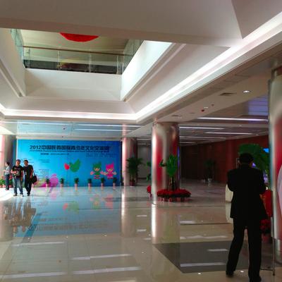 Interno Atrio Edificio CISV, Cina