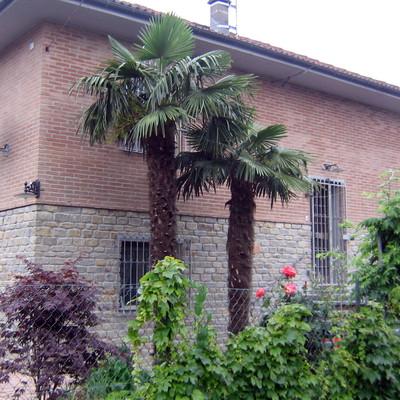 Isolamento e rivestimento abitazione