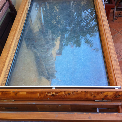 manutenzione finestre Velux