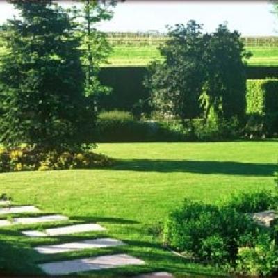 manutenzione giardini e parchi a roma e provincia