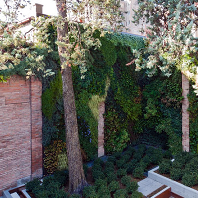 Pareti Verdi - Green wall