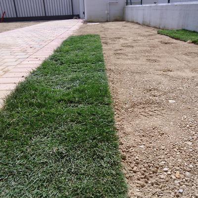 Prato a rotoli vantaggi costi e idee habitissimo - Costo realizzazione giardino al mq ...