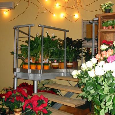 Progettazione e realizzazione di un negozio per fiorista a Lanciano