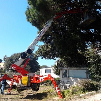 Ragno 25 metri eseguito per potatura alberi