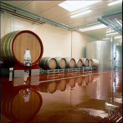 Pavimento in resina azienda vinicola