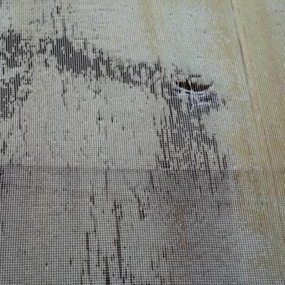 Risultati immagini per tenda cappottina con telo strappato