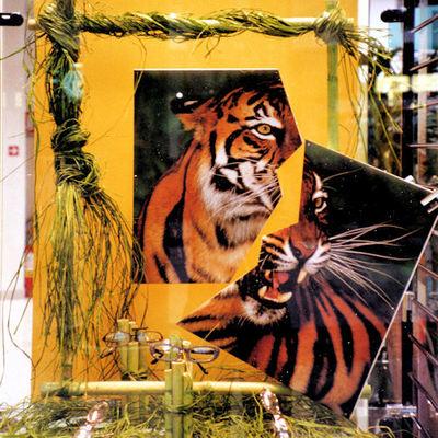 tigre jungla
