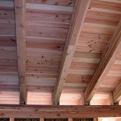 tipologia tetto rosato: douglasia