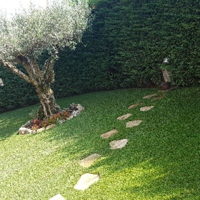 Prato a rotoli vantaggi costi e idee habitissimo for Prato erboso a rotoli