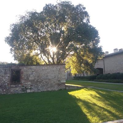 manutenzione giardini di residenze storiche