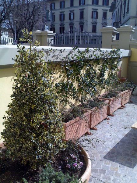 Foto allestimento terrazza di centro servizi giardini for Foto giardini a terrazza
