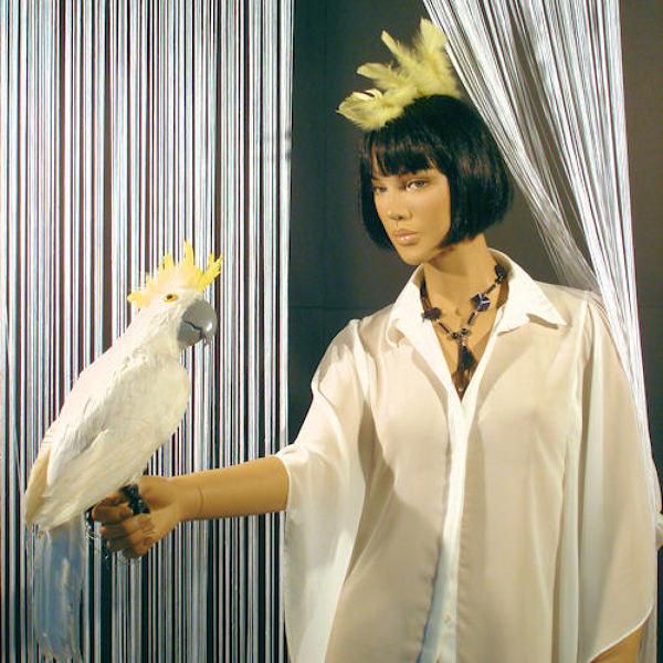 Foto cresta pappagallo di stregatto company srl 101647 for Cabine di cresta antler