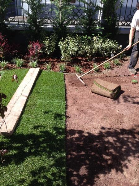 Foto progettazione e realizzazione giardini e terrazzi de for Progettazione giardini cremona