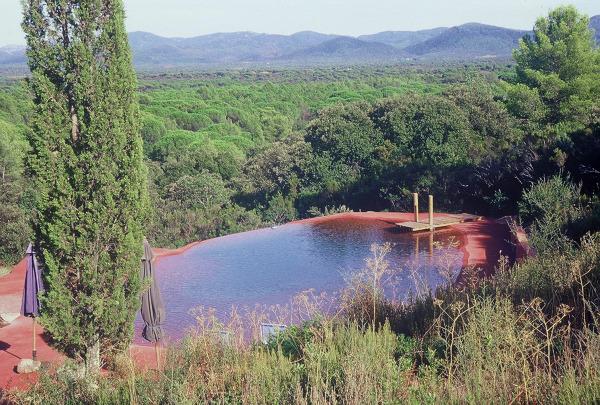 Foto realizzazione di laghetto artificiale di parquet for Alghe laghetto artificiale