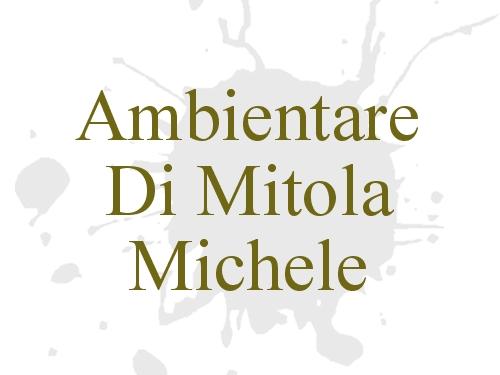 Ambientare di Mitola  Michele