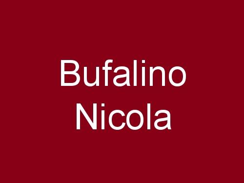 Bufalino Nicola
