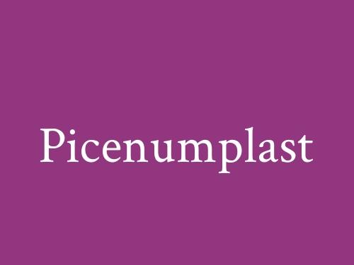 Picenumplast