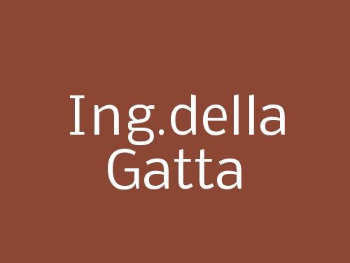 Ing.della Gatta