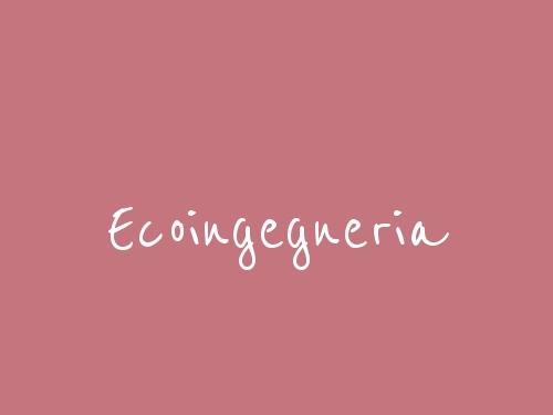 Ecoingegneria