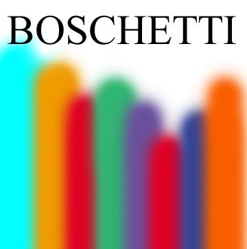 Stefano Boschetti