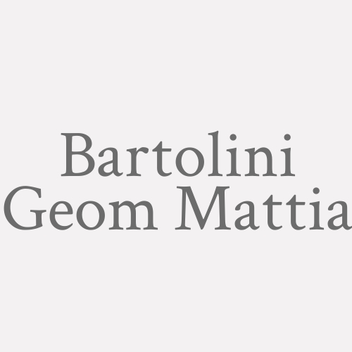 Bartolini Geom. Mattia