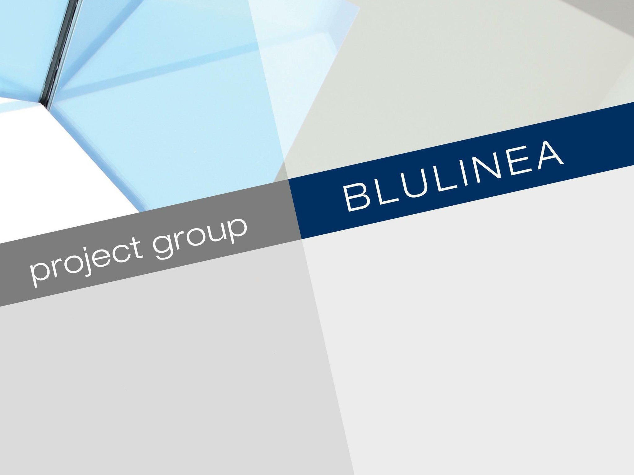 Blulinea Project Group